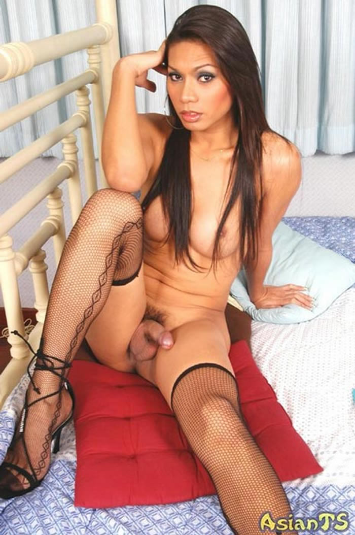 Ladyboy Benz Stockings